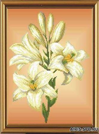 Бис3032 Рисунок на канве для вышивки бисером 'Тигровая лилия'