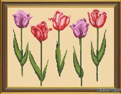 Бис3043 Рисунок на канве для вышивки бисером 'Тюльпаны'