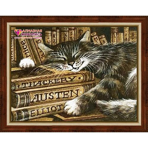 АЖ-1516 Картина стразами 'Библиотекарь'