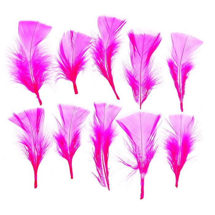 1250944 Набор перьев для декора 10 шт, размер 1 шт 10*4 цвет ярко-розовый
