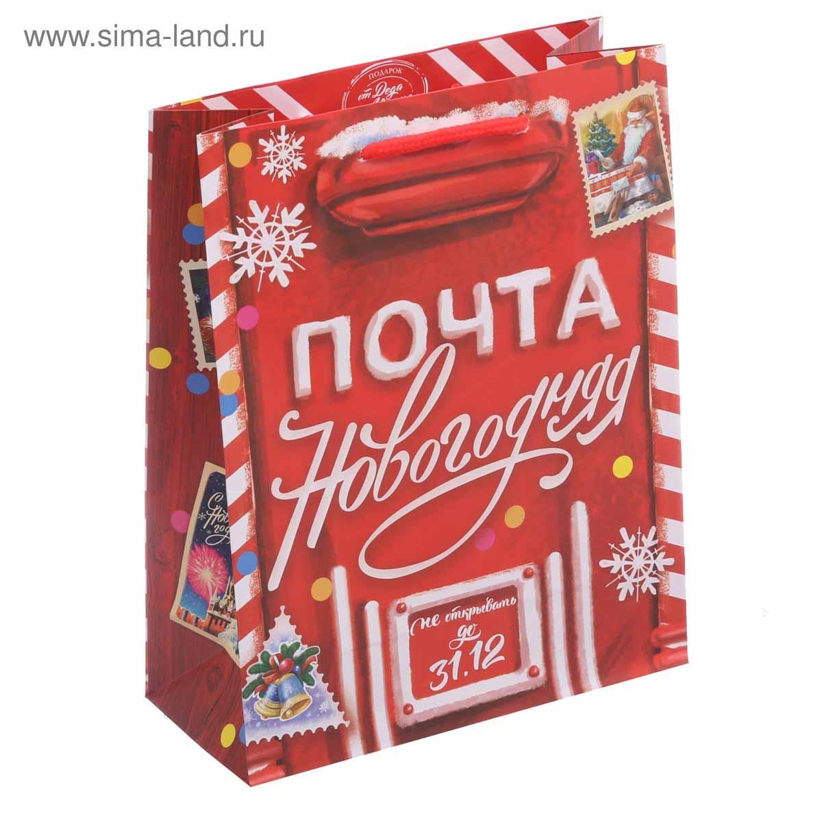 3425081 Пакет ламинированный вертикальный «Новогодняя почта», ML 23*27*8 см
