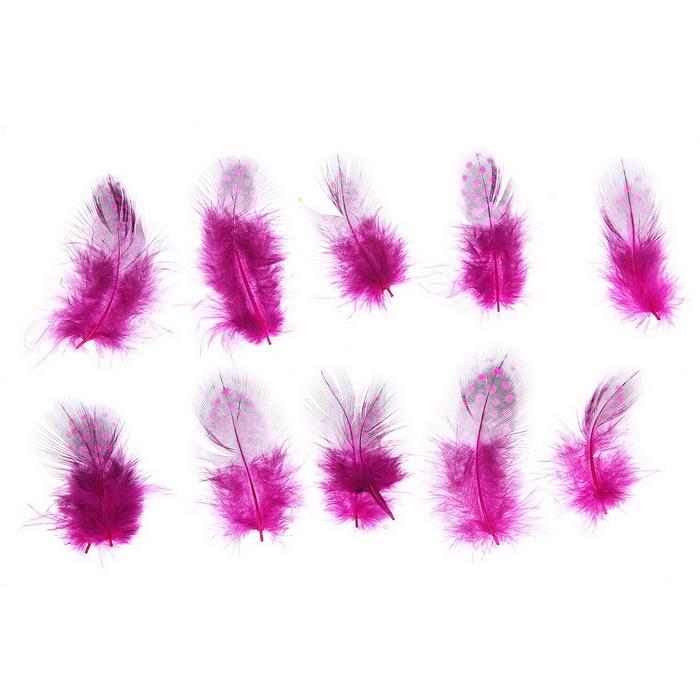 1250977 Набор перьев для декора 10 шт, размер 1 шт 5*2 цвет розовый с черным