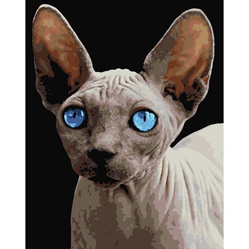 HS0026 Набор для рисования по номерам 'Сфинкс с голубыми глазами' 40*50см