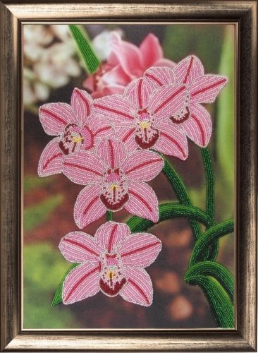 208 Набор для вышивания бисером Butterfly 'Орхидеи', 36*25 см