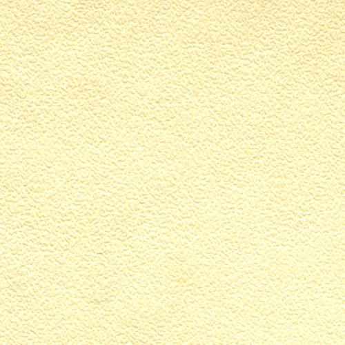 БФ002-2 Бумага с фактурой 'Яичная скорлупа', слоновая кость, упак./3 листа