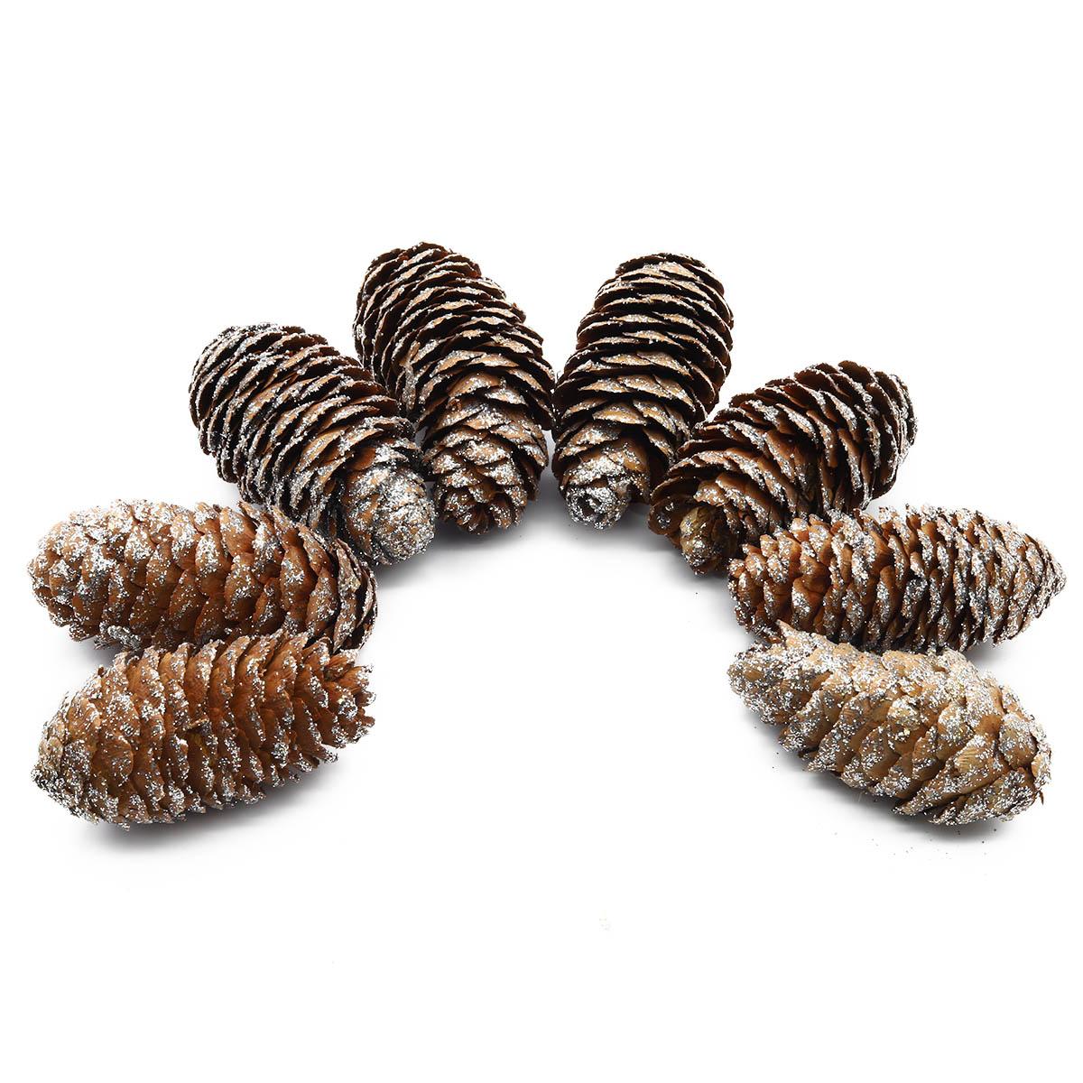 XY19-844 Шишки обработанные натуральные длина 6-8 см, ширина 3-4 см, 8шт/упак