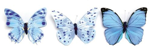 67101003 Бабочки, ассорти, упак./1 шт., Glorex