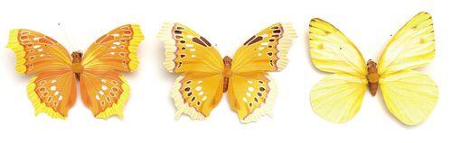 67101014 Бабочки, ассорти, упак./1 шт., Glorex