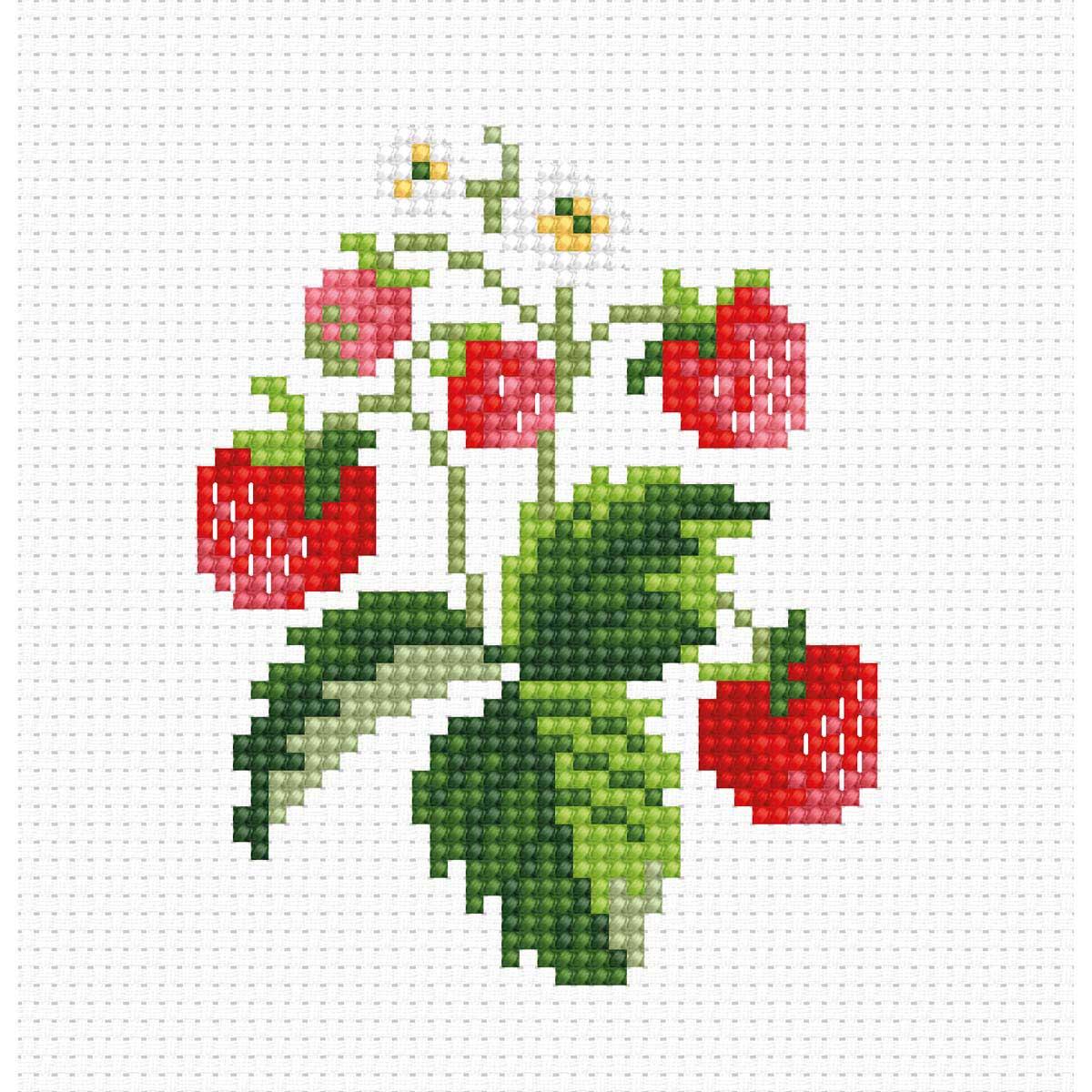 B015 Набор для вышивания 'Моя первая вышивка. Земляника' 7*9см, Luca-S