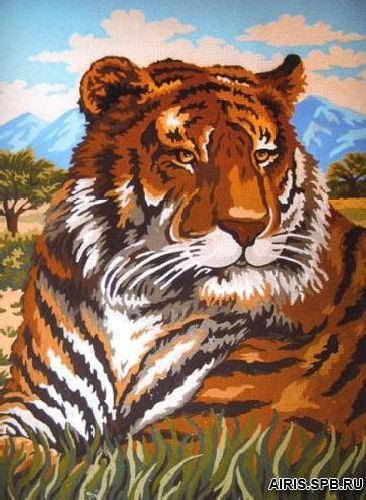 10415-CDA Канва с рисунком, Collection D`Art 'Тигр' 30*40см