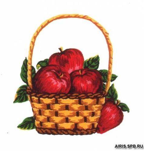 А10 Канва с рисунком, Collection D`Art 'Яблоки' 25*25см