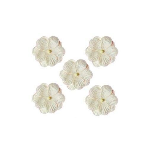 SCB3004 Набор двойных цветочков 'Анютины глазки', упак./5 шт.