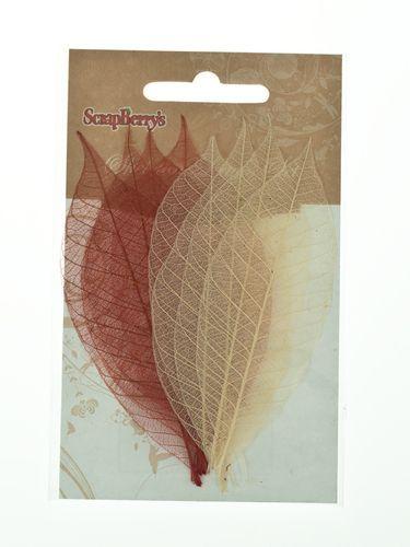 SCB300502 Скелетированные листочки из каучукового дерева, оттенки коричневого, упак./8 шт., ScrapBerry's