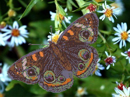 73201 Канва с рисунком Gluriya 'Цветные крылья' 40*30 см