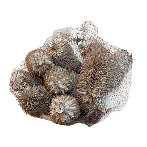 YW236 Декоративные элементы натуральные. Ворсовальные шишки, 9-10 см, 100гр